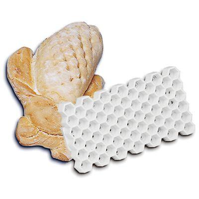 Bread mold panicle